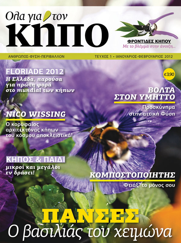 /Images/Articles/COVER-OLA-GIA-TON-KIPO-small.jpg